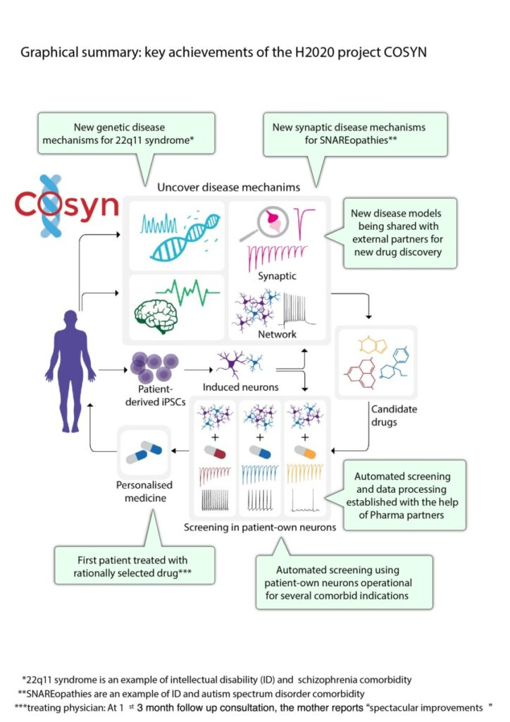 COSYN key achievements H2020